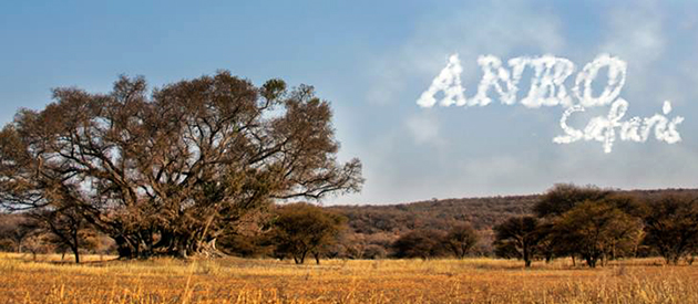 ANRO SAFARIS