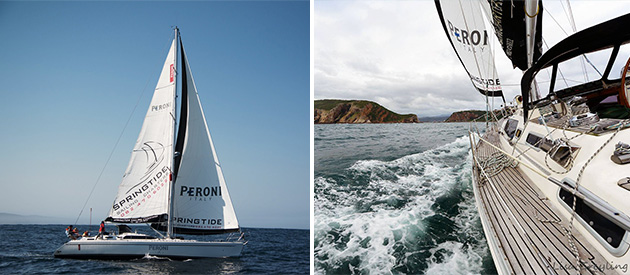 Sailing charters in Knysna, Garden Route, South Africa. Magnificent scenery. Possible whale, dolphin sightings. Luxury 50ft monohull; passionate crew